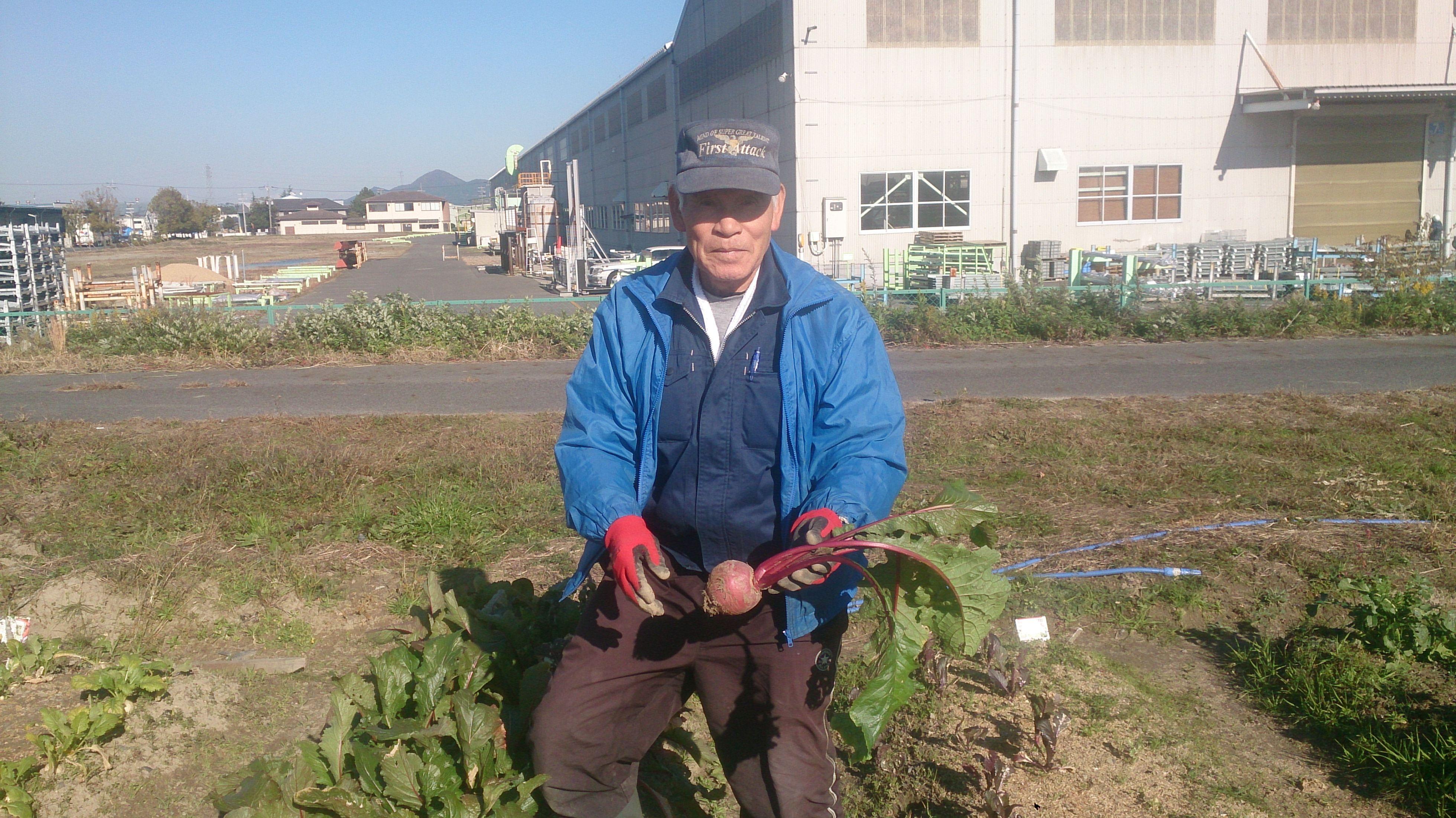 グリーンエコスター野洲農園の冬野菜⑨
