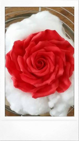 Foto: After some make - up. ...first of my 9 passion red sugar roses....