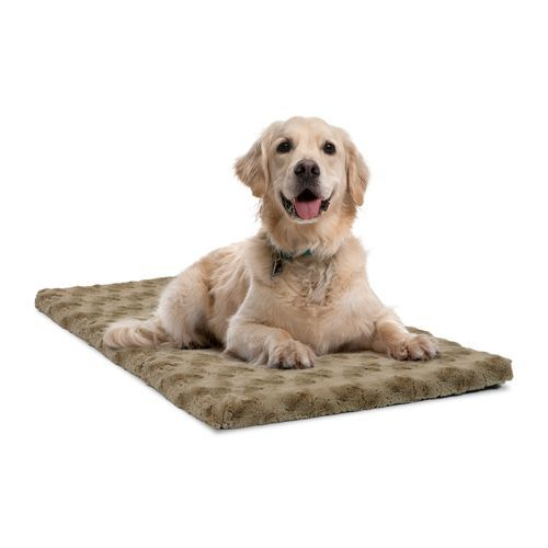 dallas manufacturing company ortho kennel pad beige medium 02