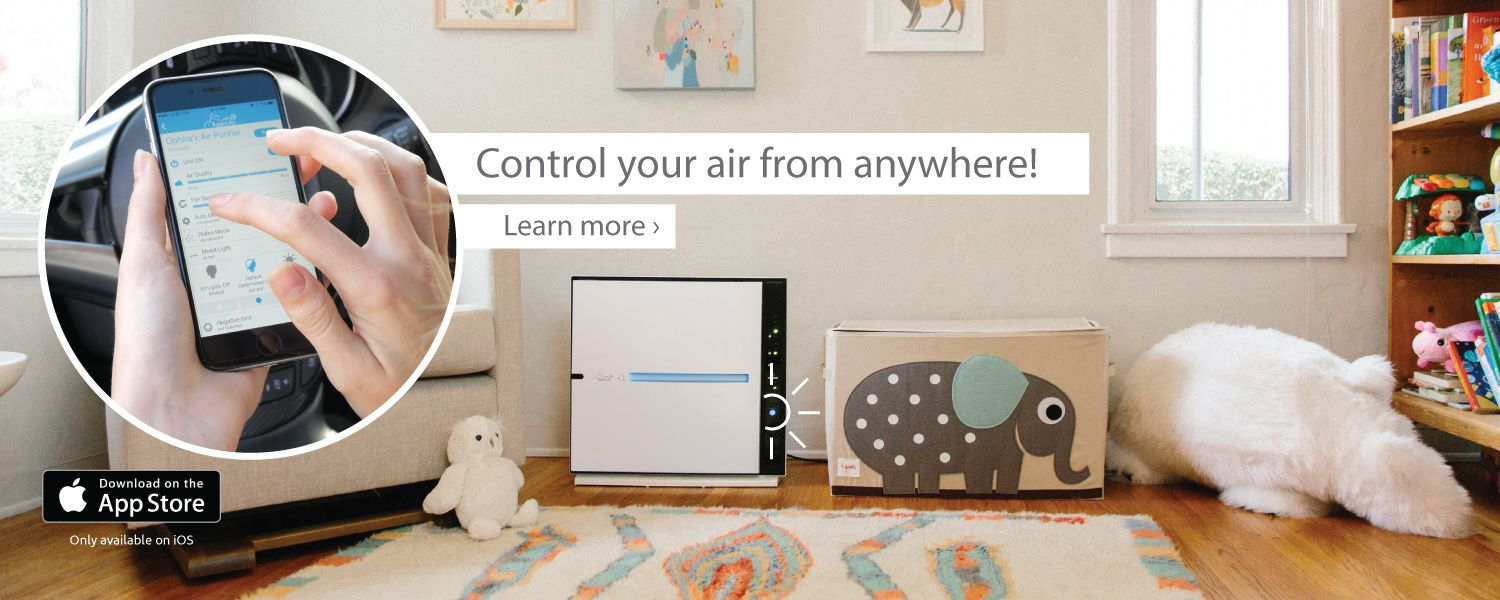 Rabbit Air Ultra Quiet HEPA Air Purifiers It's the