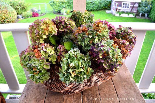 dried hydrangeas in wicker basket Funky Junk Interiors