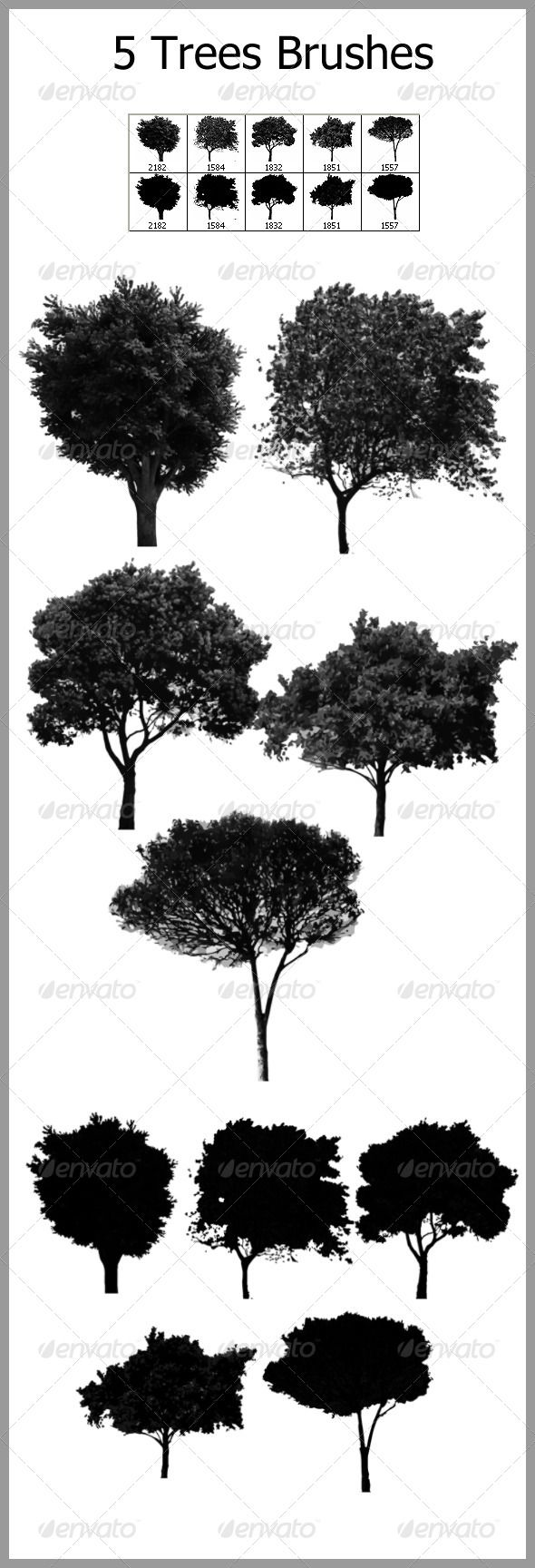 5 Trees Brushes GraphicRiver Features 10 Brushes