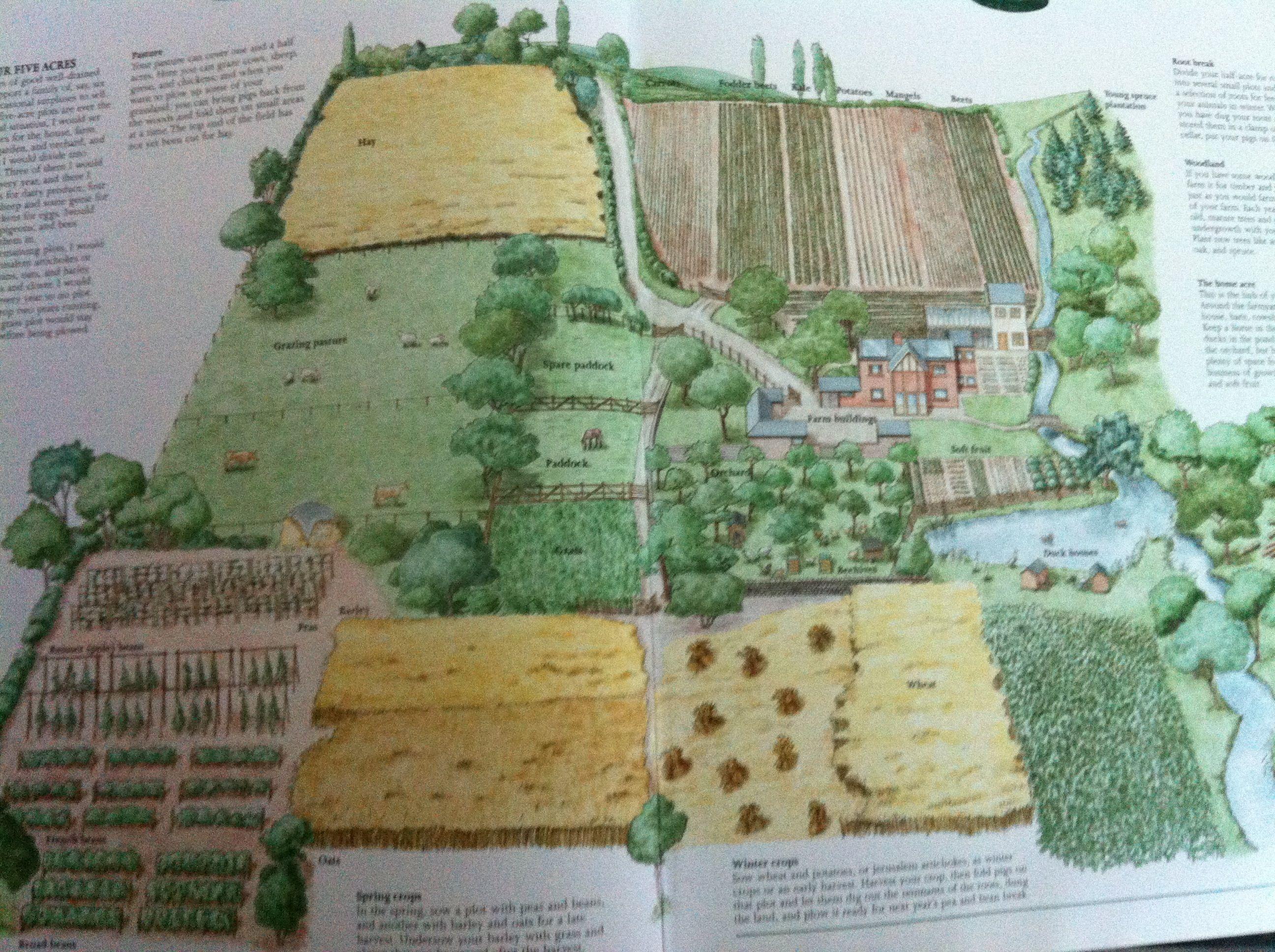 5 Acres Independance Homestead Layout Farm Layout Horse Farm Layout