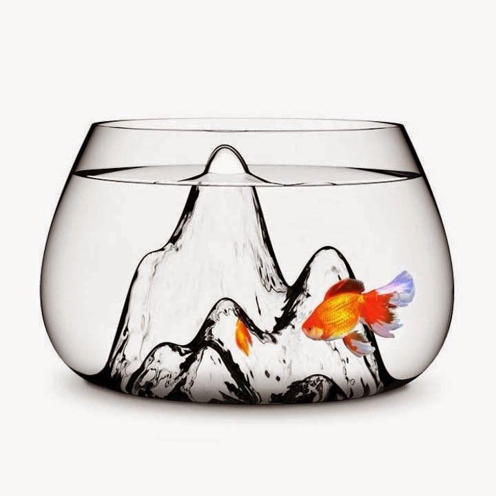 No hay mascota más vanguardista, y sobre todo en un departamento, que un pez.