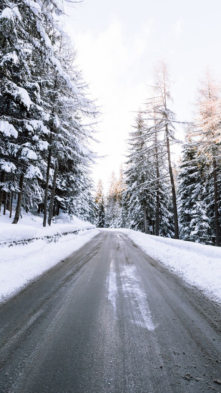 download wallpaper 750x1334 road, snow, winter, trees iphone 6 hd
