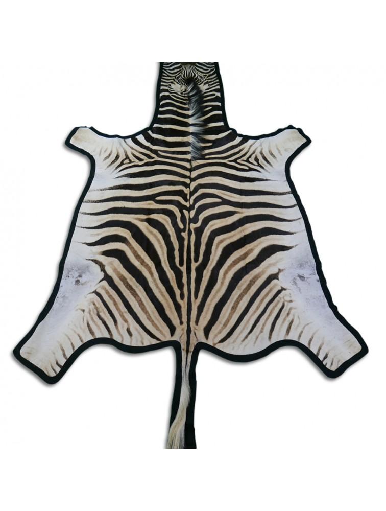 Search Results For Dyed Springbok Skin Zebra Skin Rug Zebra Hide Rug Zebra