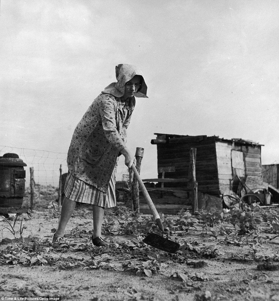 Dust%20bowl  History  Things From  Our Past  Pinterest  Dust Bowl,