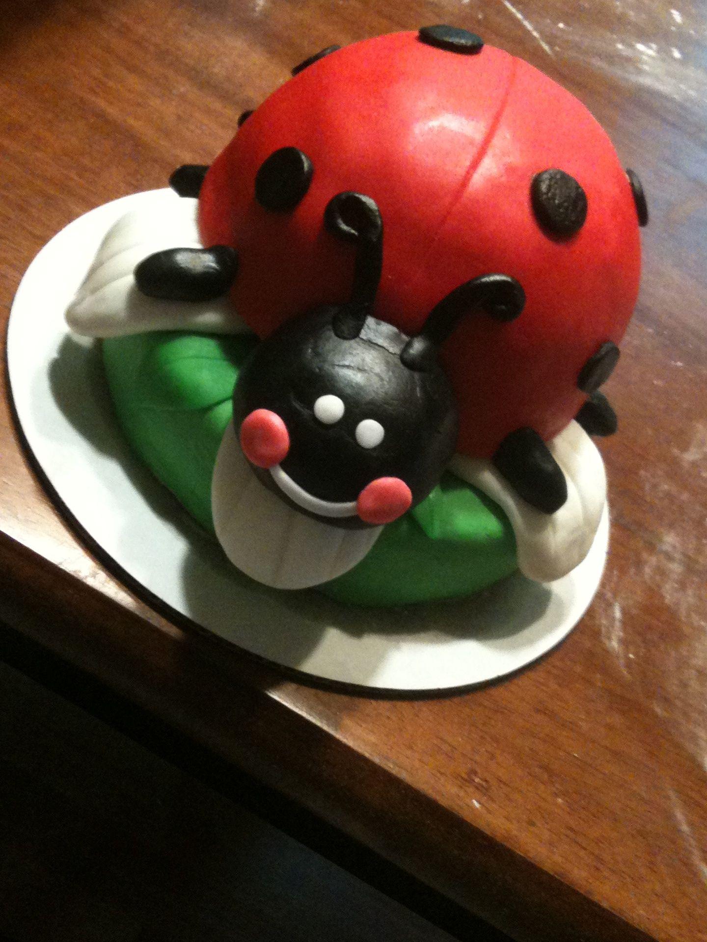 Lady Bug Birthday Cake It Takes The Cake Pinterest Bug