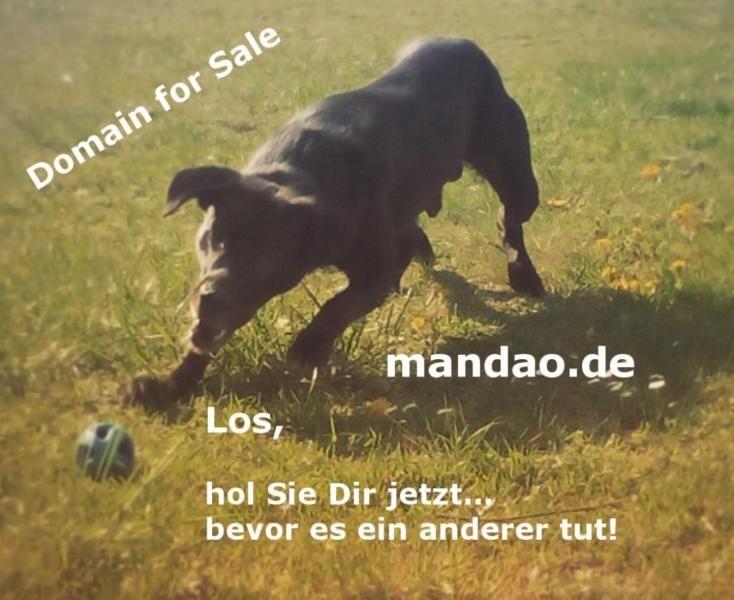 Hallo, Du hast ein neues Projekt und bist auf der Suche nach einen Domainnamen? Hier bist Du...,mandao.de - Domain zu verkaufen in Berlin - Lichtenberg