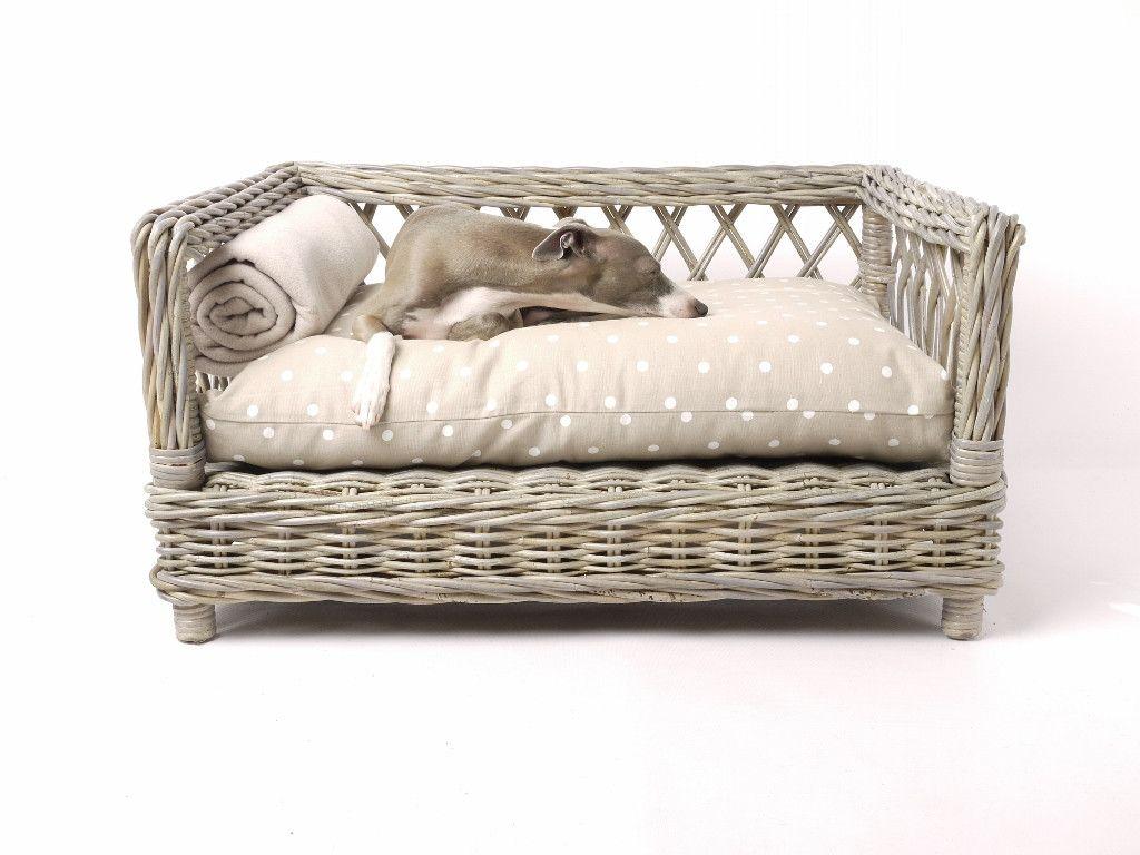 the raised rattan dog bed