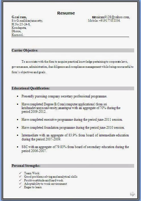 Curriculum Vitae Good Example Sample Template Example Ofexcellent