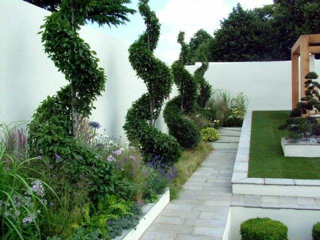 hohe Sichtschutz Mauer weiße hohe immergrüne Stauden Garden