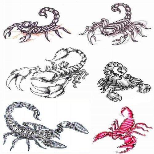 Tatouage Scorpion Signe Astrologique Et Symbolique Du Scorpion