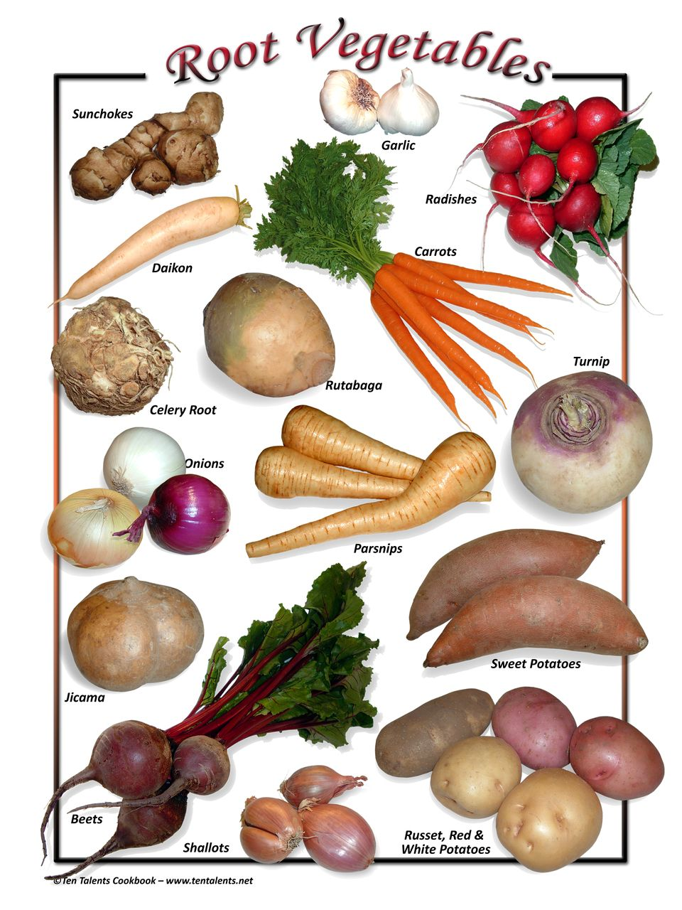 Identifying Root Vegetables View Thousands Of Amazing Images On