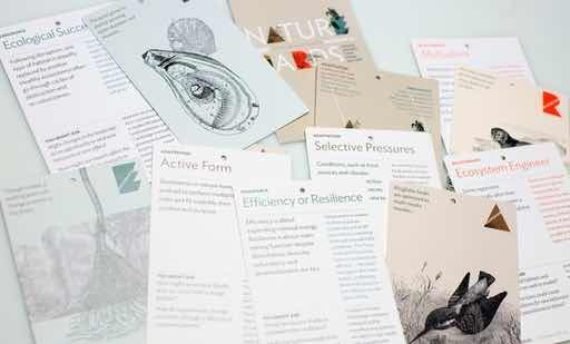 Nature Cards are a collection of cards featuring strategies from the