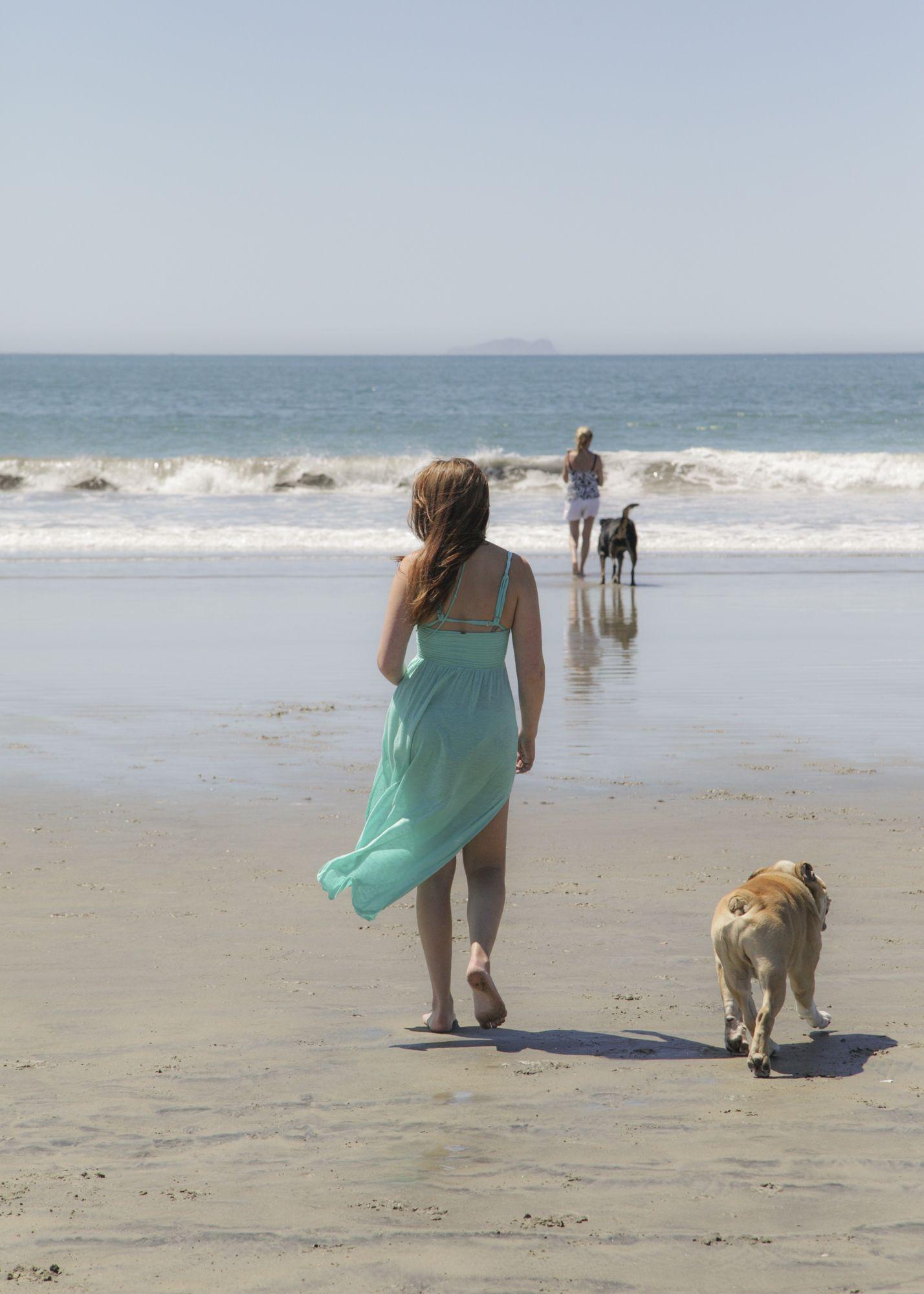 Rawco At Coronado Dog Beach In San Diego Rawco California Sandiego Dogbeach San Diego Beach Dog Beach San Diego