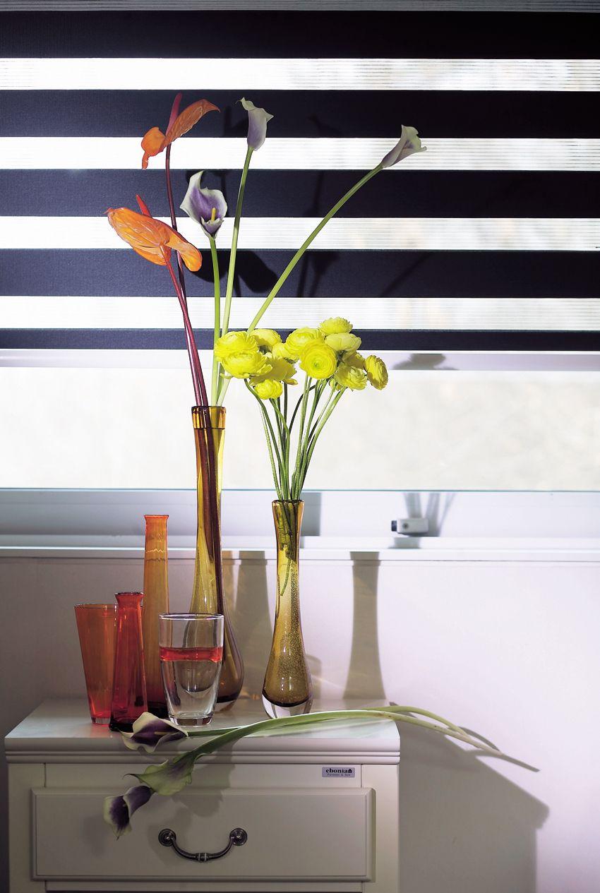 Elite High Lite Shades Elite Window Fashions Window Styles Zebra Shades Blinds