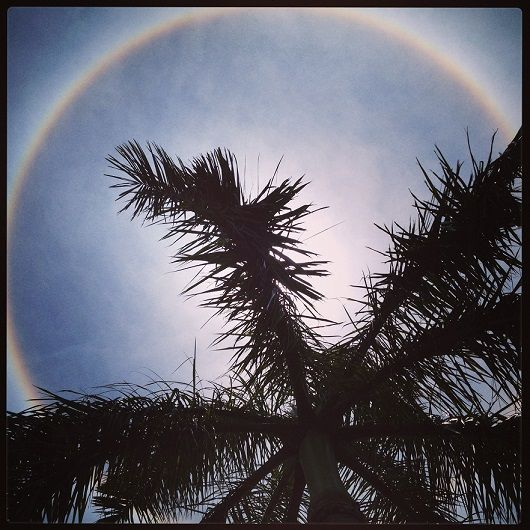Check out this rare and beautiful sight! The halo or rainbow around the sun is, according to experts, caused by the scattering of sunlight by tiny ice crystals very high in the sky.