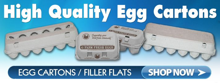 Egg Cartons For Sale At Wholesale Egg Trays And Packaging Eggs For Sale Egg Carton Chickens Backyard