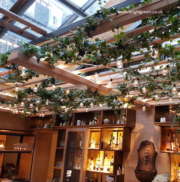 Bespoke Artificial Ivy On Vine Wrapped Around Ceiling Trellis Above A Hotel Bar Small Courtyard Gardens Outdoor Indoor Decor Small Backyard Patio