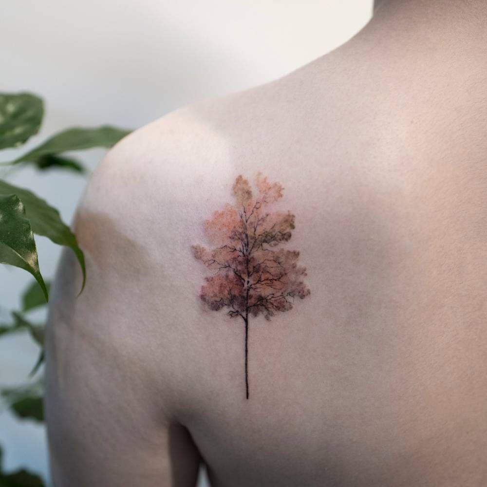 Tree Tattoo On The Left Shoulder Blade Maple Tree Tattoos