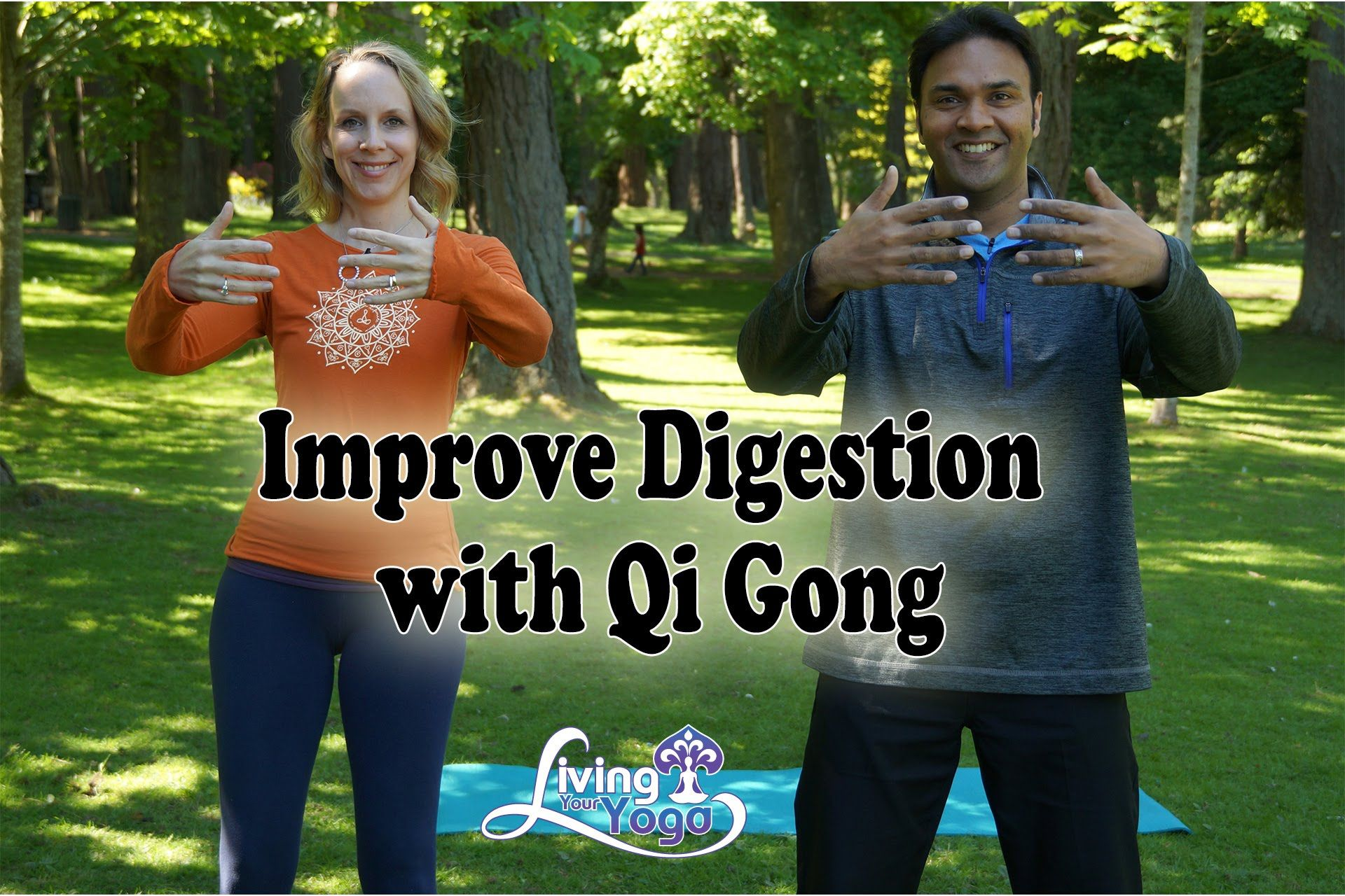 Improve Digestion with Traditional Chinese Medicine and Qi
