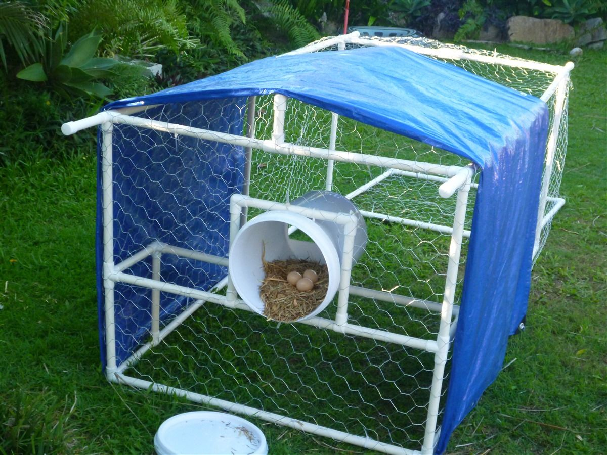 Chicken tractor made from pvc pipes and connectors for Diy movable chicken coop
