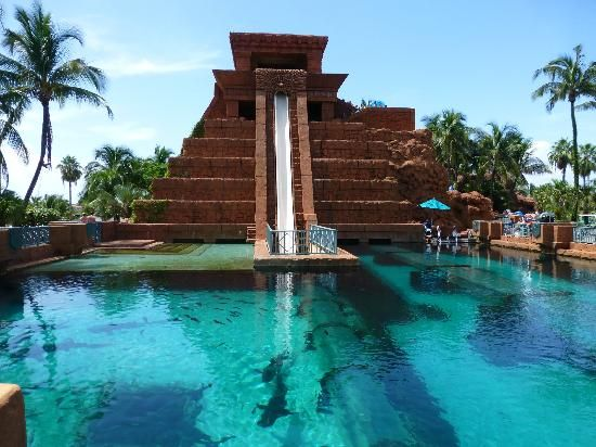Atlantis Beach Tower Autograph Collection Updated 2017 Resort Reviews Price Comparison