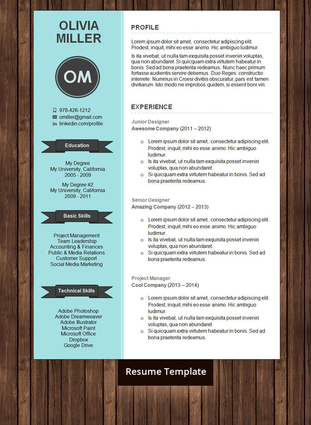 Instant Download ★ Resume Template / CV Template for