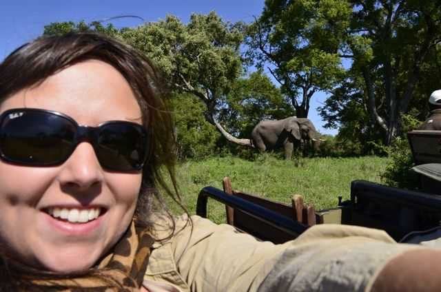 Me seen with a wild Elephant in the Ngala Game Reserve near Kruger National Park in South Africa. Such an awesome experience! To see the other animals I saw check out my blog post: http://www.travelyourself.ca/cailins-blog/the-big-five-animals-in-south-africa/ @Visit South Africa