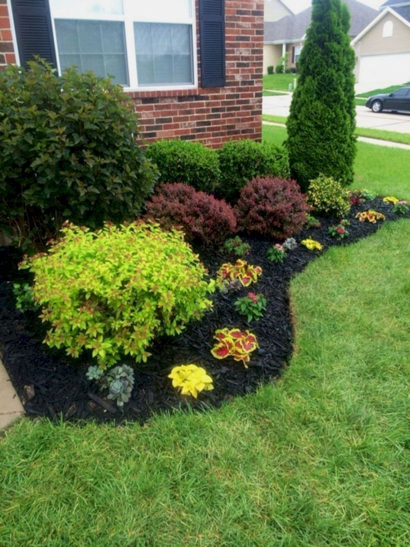 easy simple and cheap landscape