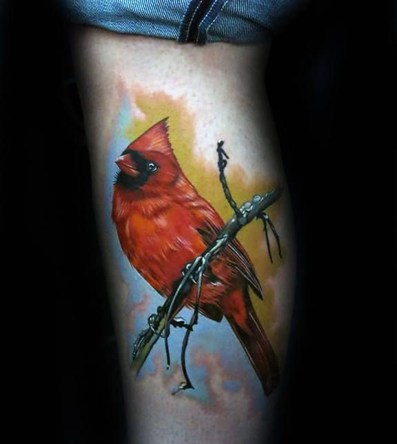 60 Cardinal Tattoo Designs For Men Bird Ink Ideas Cardinal