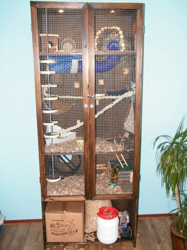 My home made rat cage!