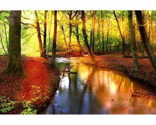 fototapete / vliestapete nature. motiv: 2,00x1,33 m. dekor: natur ...