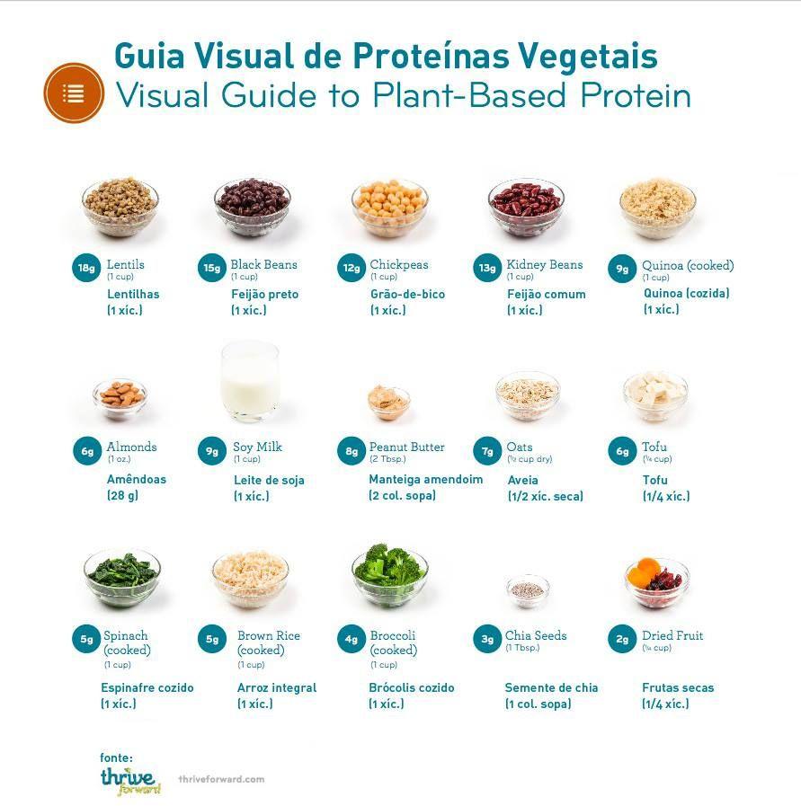 Proteinas X Musculos X Dieta Vegana Proteinas Proteinas