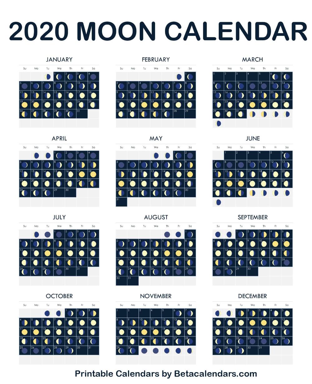 2020 Moon Calendar Moon Phase Calendar Moon Calendar Lunar Calendar