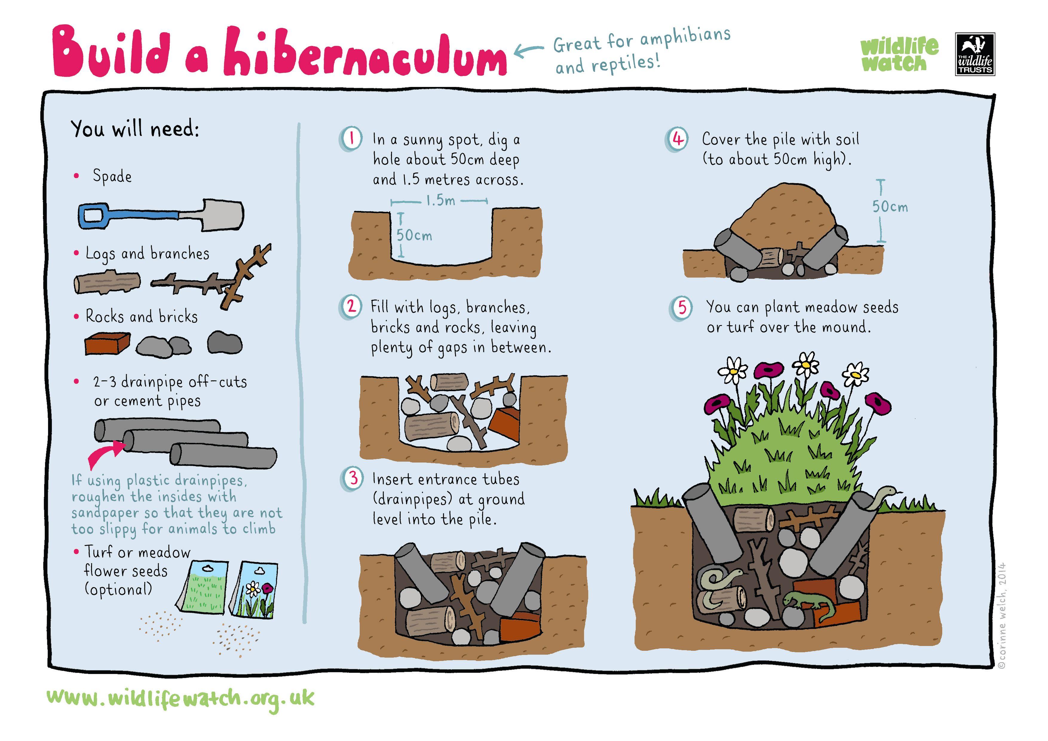 Build A Hibernaculum
