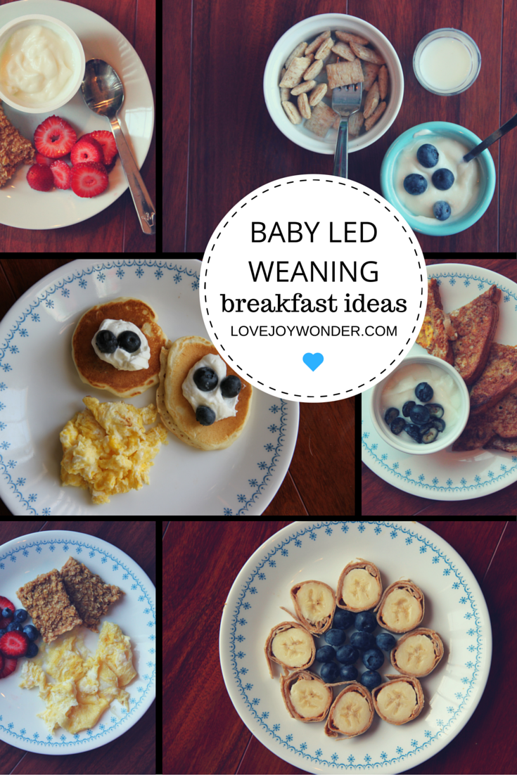 Lovejoywonder baby led weaning and toddler montessori lovejoywonder baby led weaning and toddler montessori breakfast meal ideas and inspiration baby mealstoddler forumfinder Gallery