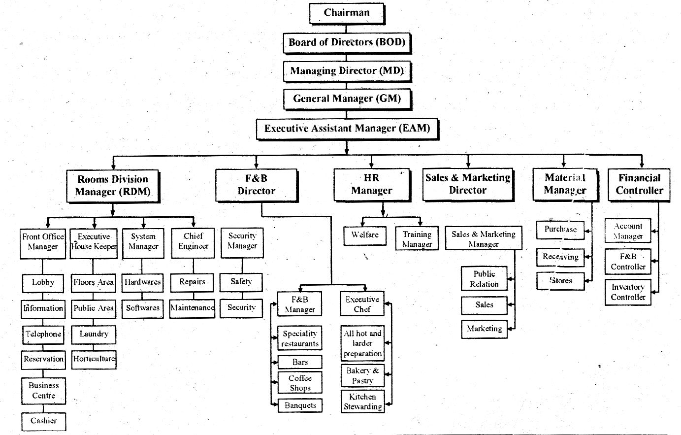 Organizational Chart Of Hotel Industry What Is Hotel In 2020 Organizational Chart Hospitality Industry Organizational