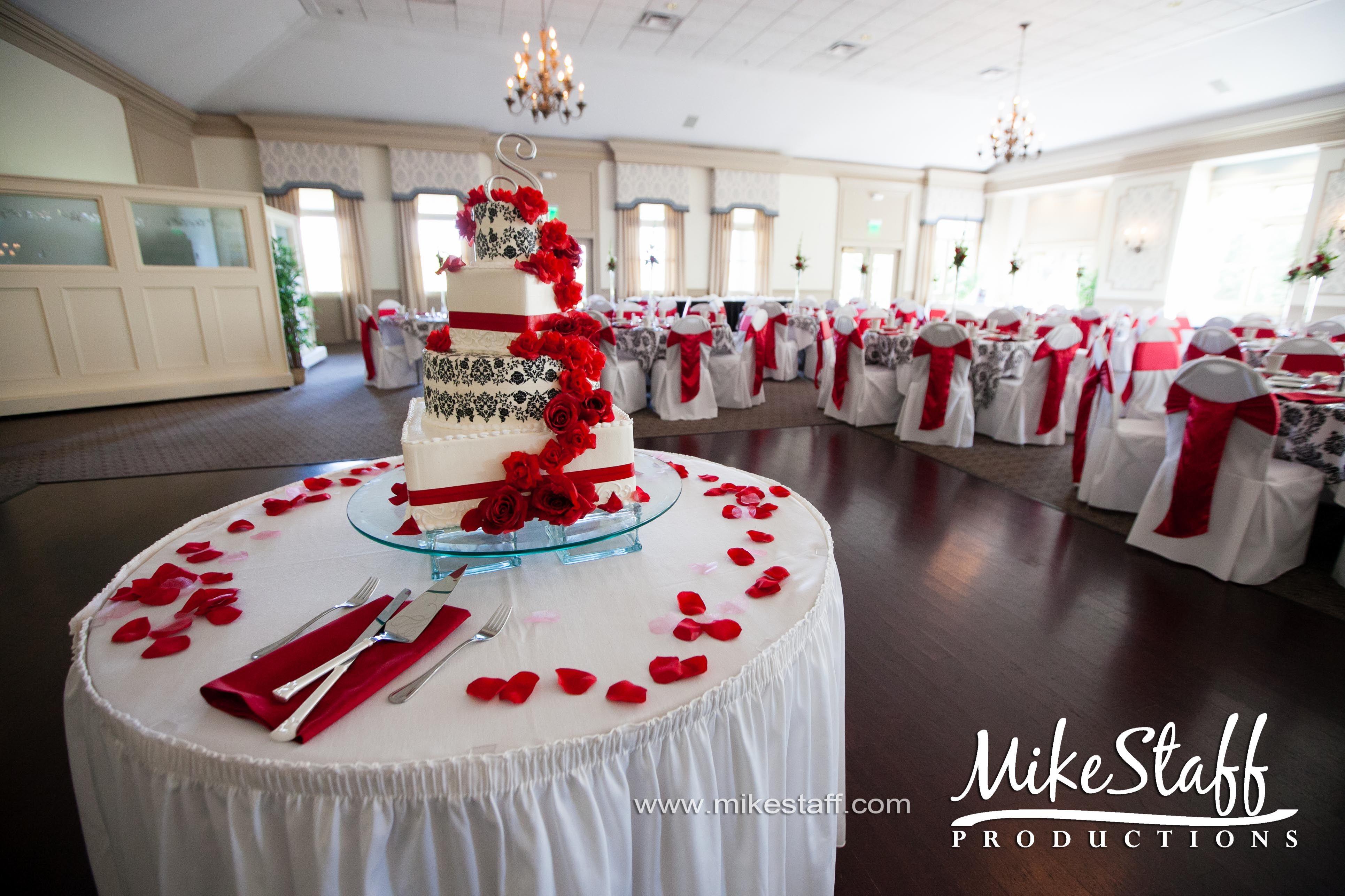 Zebra wedding decorations  wedding cake Michigan wedding Chicago wedding Mike Staff