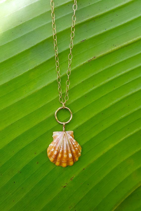 Sunrise Shell Necklace, 14k Gold filled, LARGE Hawaiian shell, Extra ...