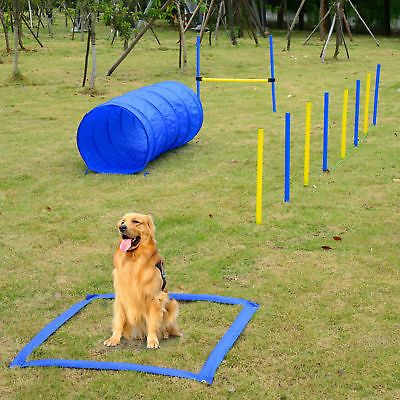 Pin By Gadgets Review On Pet World Dog Agility Agility Training