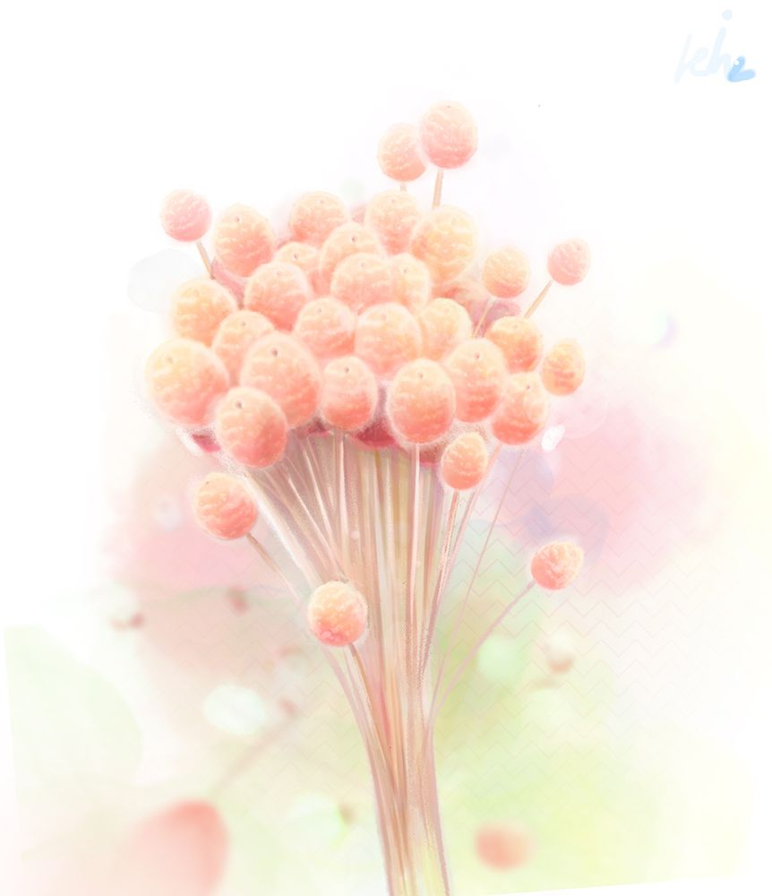 Dry Flower, Flower, 꽃, 핑크물 들인 드라이 플라워는 참 예쁜 거 같다.