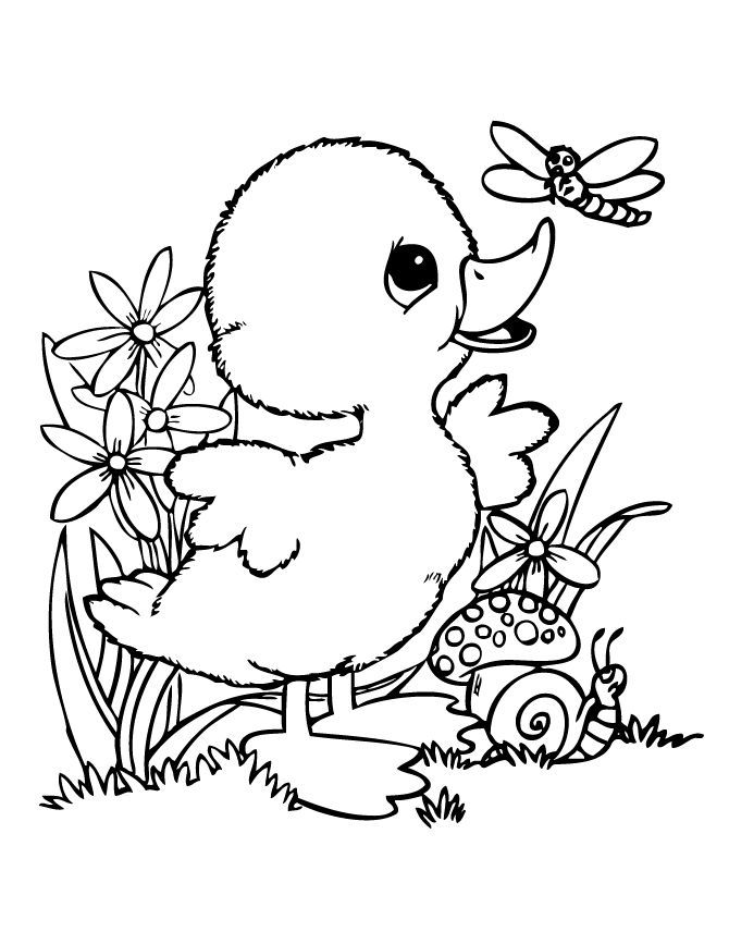 Baby Duck And Friends Coloring Page Cute Coloring Pages Bird Coloring Pages Animal Coloring Pages
