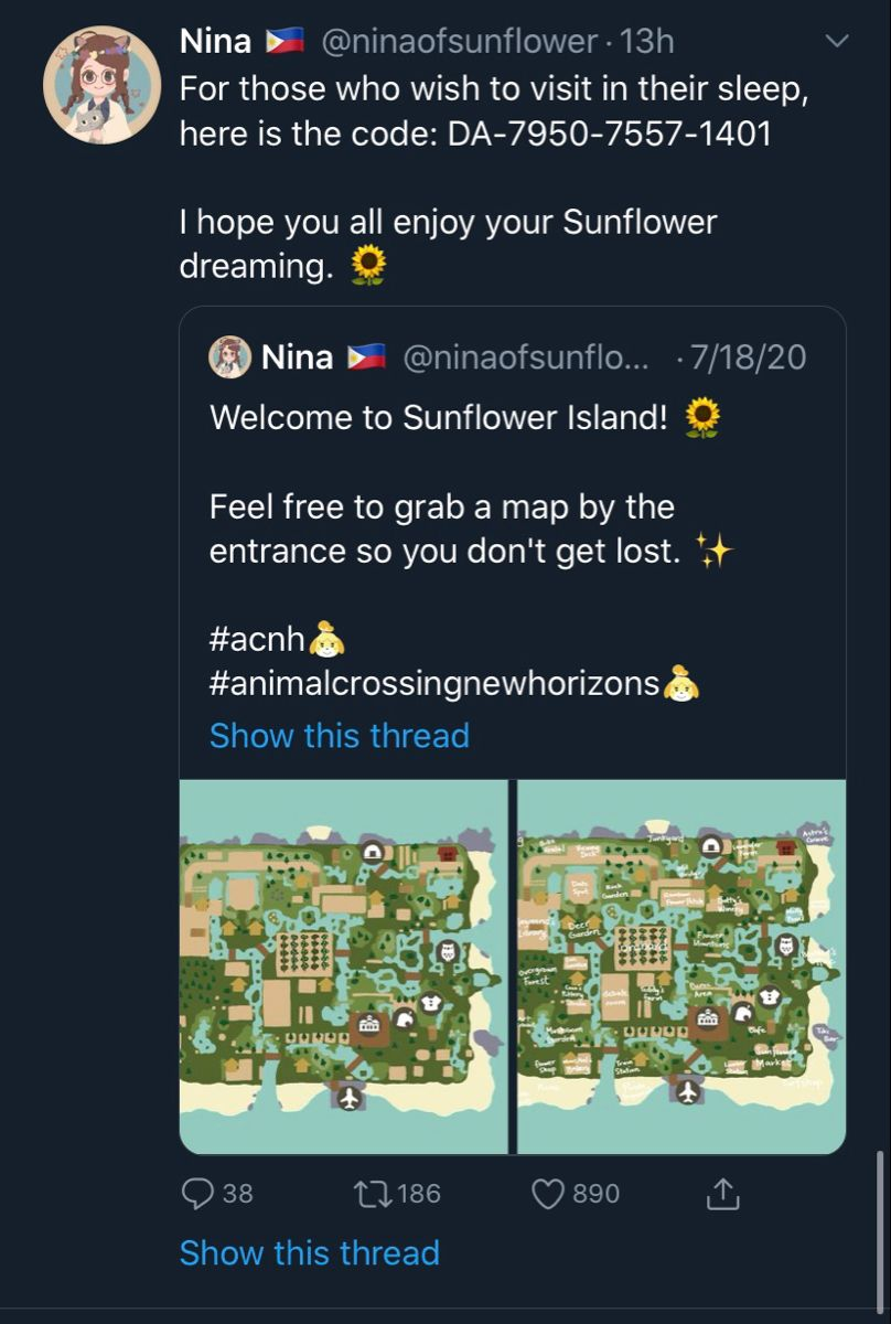 Pin by 𝓜𝓪𝓷𝓲 𝓛𝓲𝓰𝓱𝓽𝓼 on ACNH in 2020 Animal crossing wild