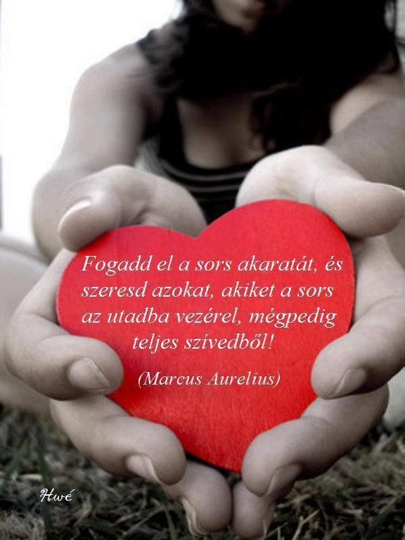 sors szerelem idézetek Marcus Aurelius idézet   Words quotes, Life quotes, Words
