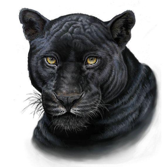 black panther print  tatuagem de pantera desenho de