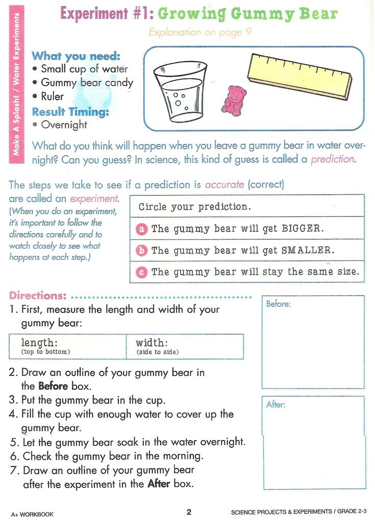 gummy bear science experiment worksheet google search love learning science fair. Black Bedroom Furniture Sets. Home Design Ideas