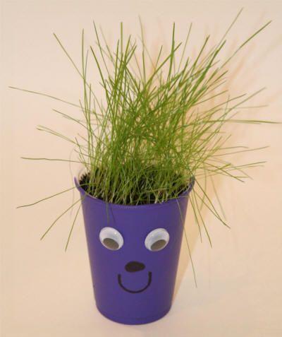 Grass Seed Cup Craft Grassplant Springplanting Seasons Fun