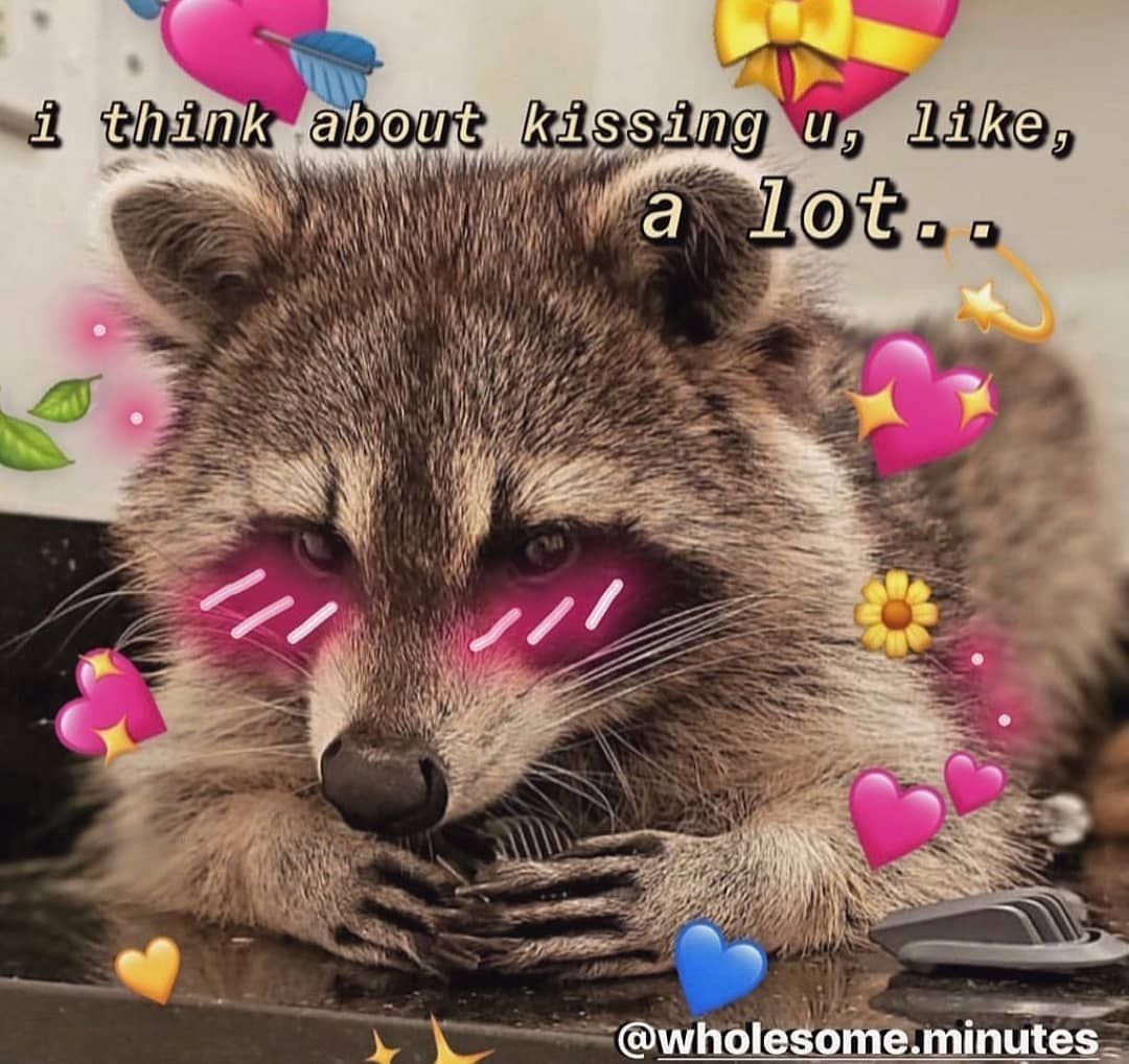 I Feel Sick And I Have Work But Have A Good Day Guys Love Memes Funny Cute Love Memes Love Memes